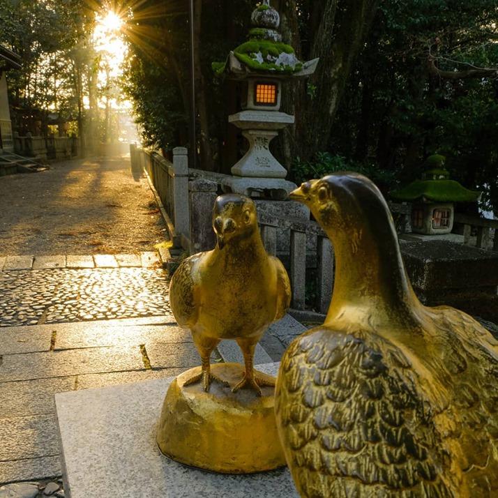 >新年初日(撮影michiyo01130312)